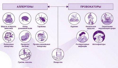 Вещества аллергены и провокаторы