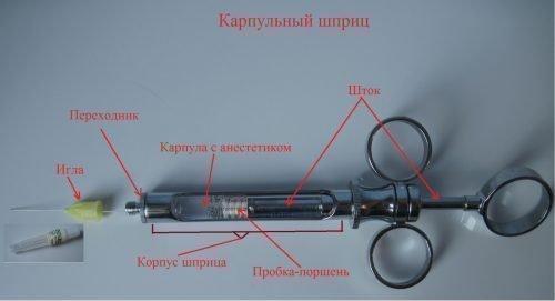 Строение карпульного шприца - схема