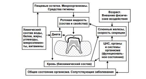 Основные причины кариеса зубов
