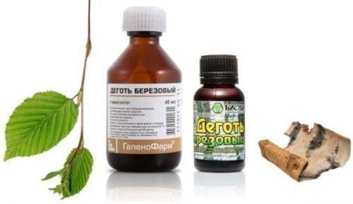 Березовый деготь - старинный народный способ лечения пародонтоза