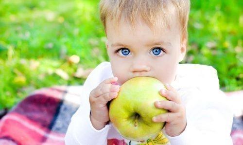 Твердая пища для ребенка обязательна