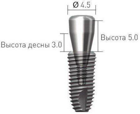 Размеры формирователя десен
