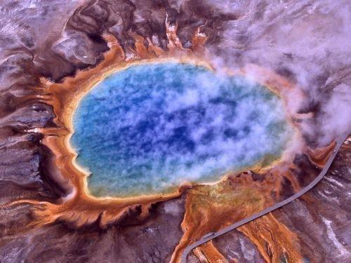 Термофилы – это микроорганизмы