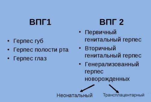 Места проявления 1 и 2 типа